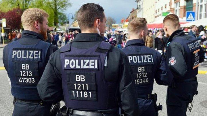 В Германии осы помогли полиции задержать пытавшегося сбежать преступника