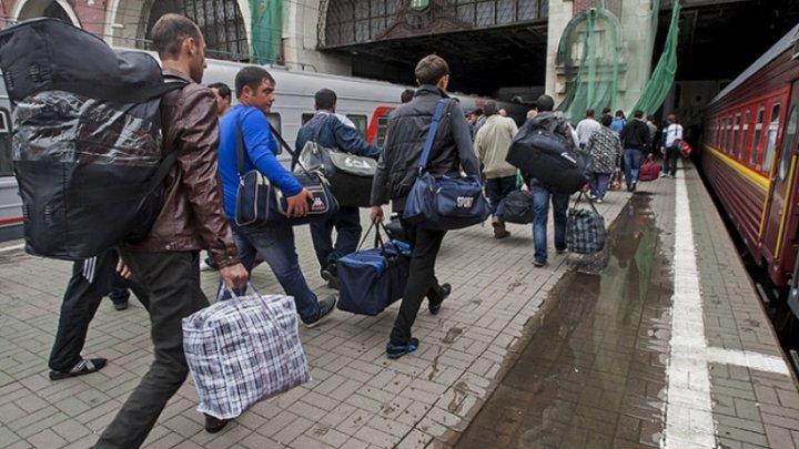 Число временно пребывающих в Россию трудовых мигрантов из Молдовы резко упало в последние годы