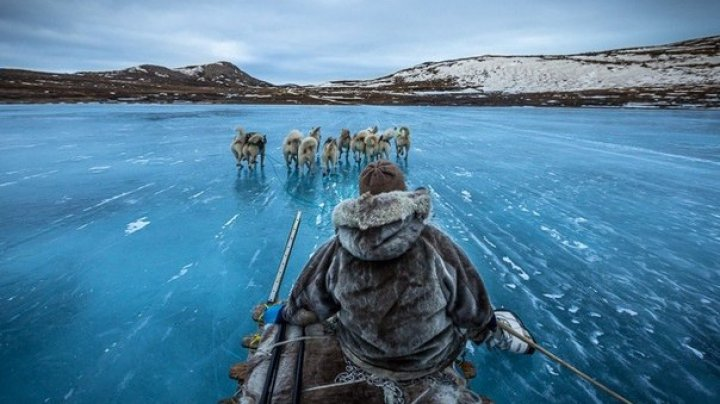 СМИ: Трамп интересуется покупкой Гренландии