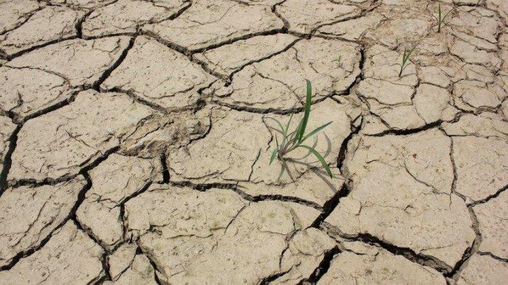 Синоптики объявили желтый код в связи с гидрологической засухой