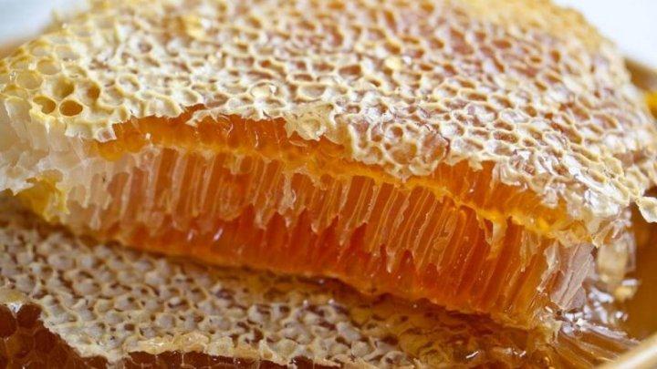 Пчеловоды завершают сбор подсолнечного меда
