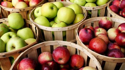 Садоводы и переработчики не могут договориться о цене на яблоки