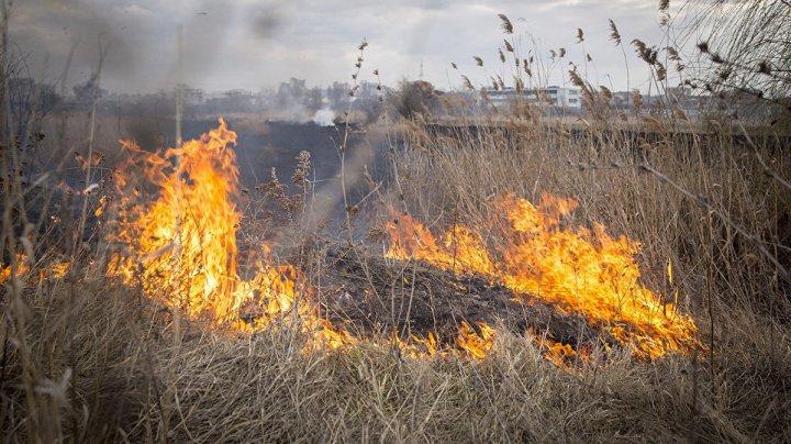 Желтый код: сохранится чрезвычайная пожарная опасность