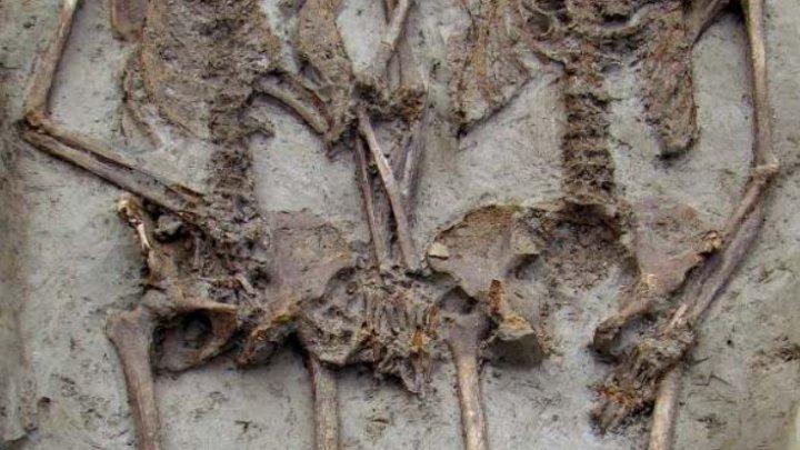 Влюбленные из Модены: держащиеся за руки скелеты времен Римской империи оказались двумя мужчинами
