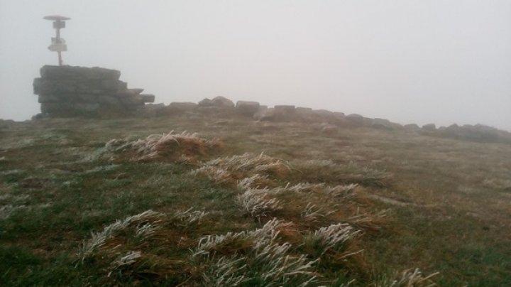 В Карпатах пошел снег