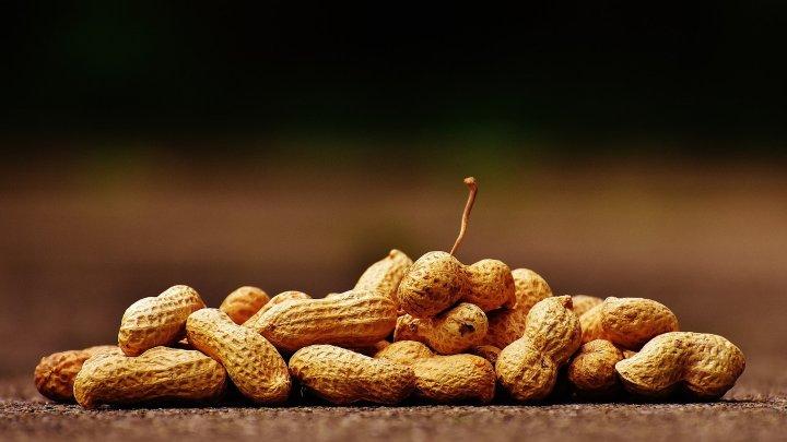 Первая в мире терапия от аллергии на арахис одобрена в США