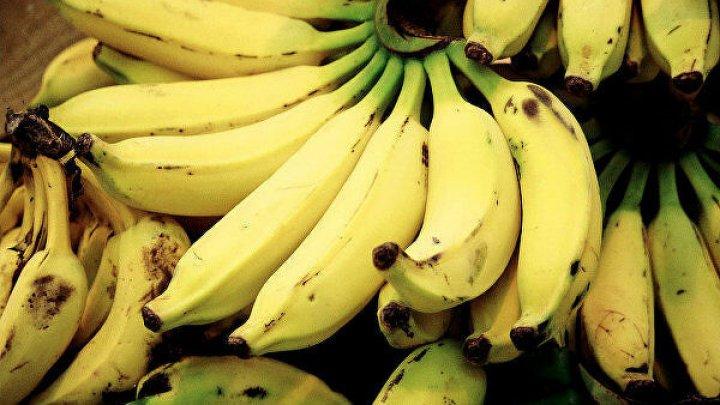 Ученые предупредили о скором дефиците бананов