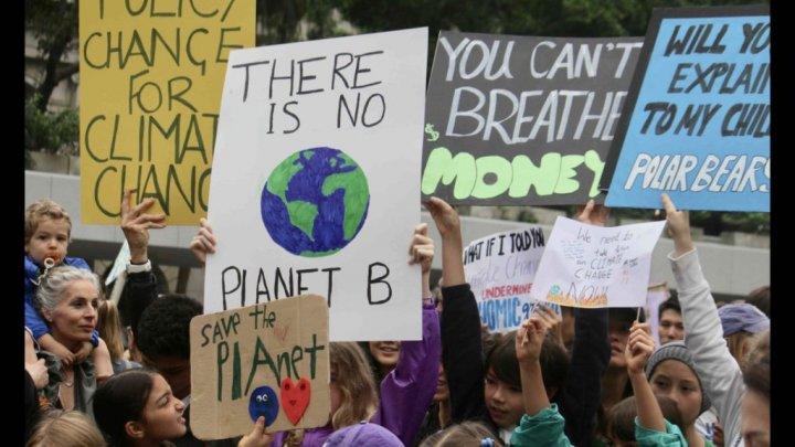 156 стран объединятся на глобальной забастовке в защиту климата (видео)