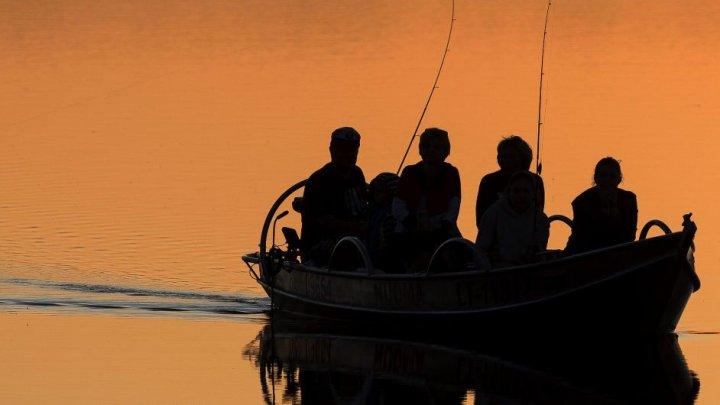 """С рыбной фермы в Норвегии """"сбежали"""" 10 тысяч лососей"""