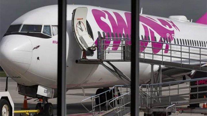 В Канаде самолет совершил посадку после столкновения со стаей гусей