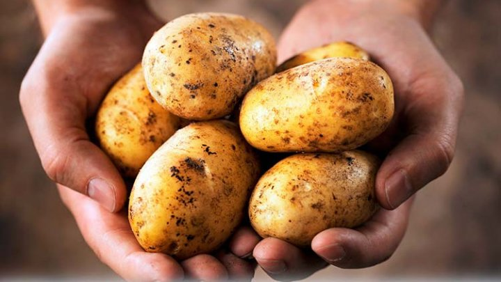 Эксперты: К концу месяца картофель подорожает