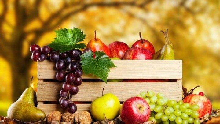 Медики назвали продукты, которые надо есть осенью, чтобы не заболеть