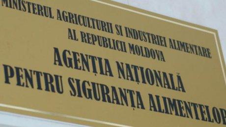 Инспекторы НАПБ изучат партию яблок, которую Россия вернула обратно в Молдову