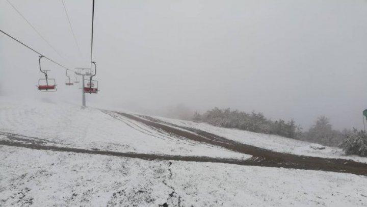 Карпаты засыпало снегом (ФОТО/ВИДЕО)