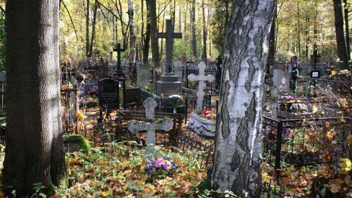 На кладбище в Петербурге нашли мертвым уроженца Молдовы