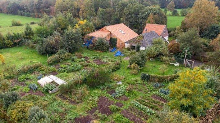 В Голландии семья девять лет жила в подвале