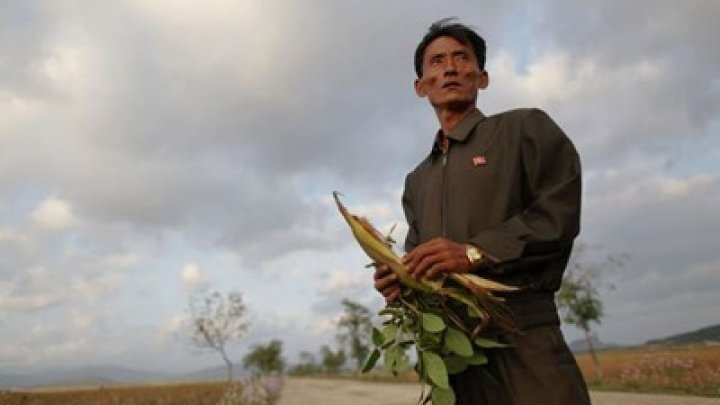 ООН: Половина жителей Северной Корее недоедает