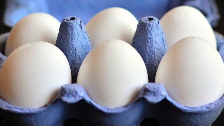 Диетолог рассказала, кому могут навредить яйца