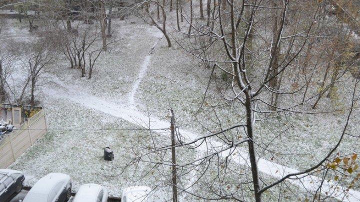 Первый снег в Москве и Киеве: жители делятся впечатлениями в Сети (ВИДЕО)