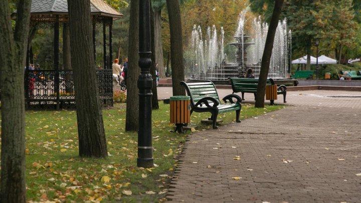 Погода на 15 ноября
