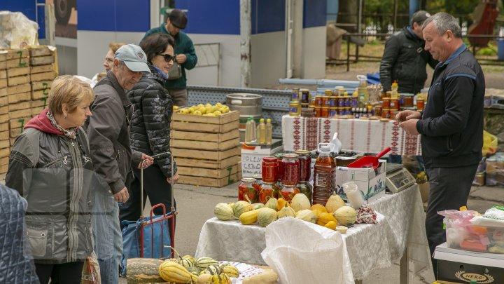 В столице открылась выставка Moldagrotech & Farmer: представлена современная сельхозтехника (ФОТОРЕПОРТАЖ)