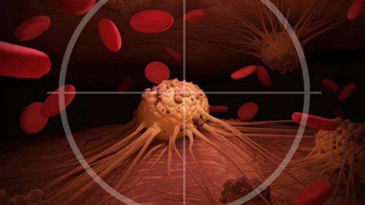 Ученые выяснили, почему раковые опухоли не поддаются лечению
