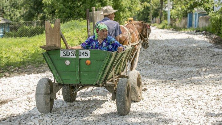 Как в Молдове отметили Международный день сельских женщин (ФОТОРЕПОРТАЖ)