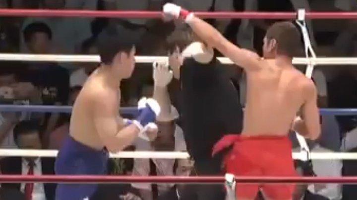 Промахнулся: боец случайно нокаутировал судью на седьмой секунде поединка (ВИДЕО)