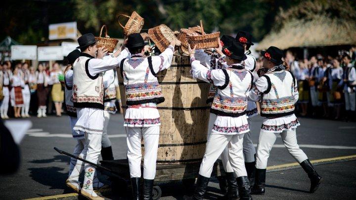 Полиция призывает граждан не злоупотреблять алкоголем в День вина