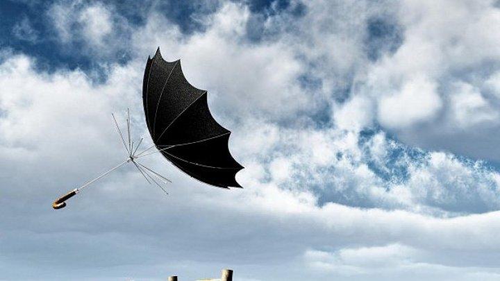 Погода на 14 ноября: синоптики обещают сильный ветер и переменную облачность
