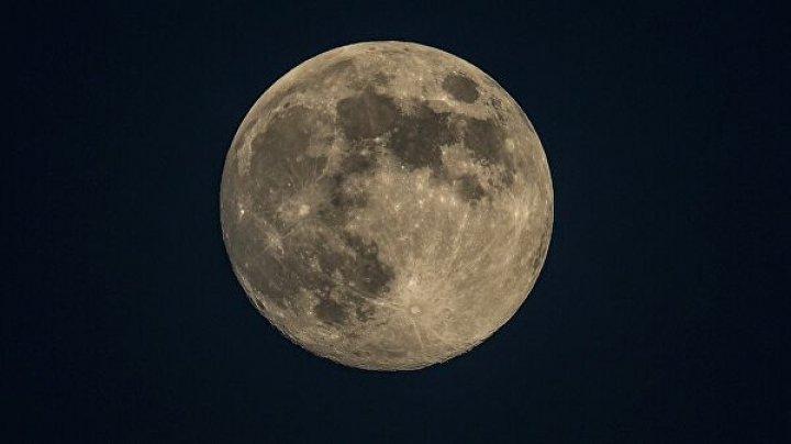 В НАСА сообщили, кто выиграл контракт на доставку астронавтов на поверхность Луны