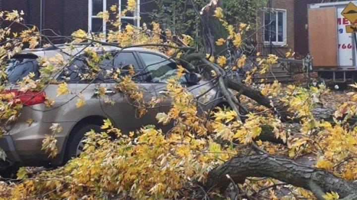 Непогода в Канаде: ветер оставил без электроэнергии почти миллион человек