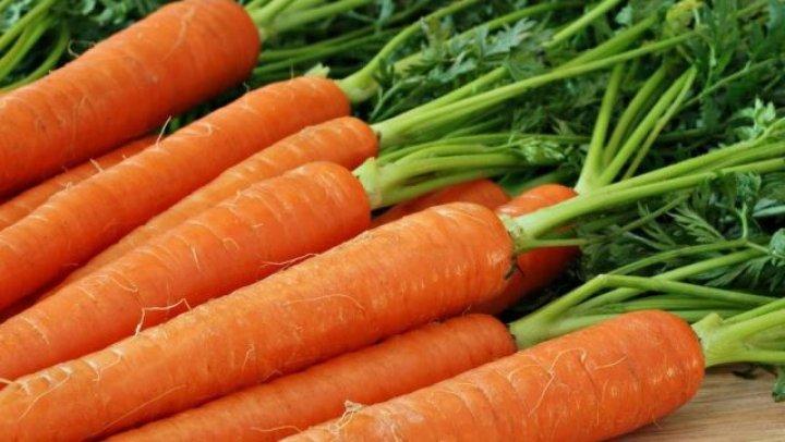 Один сорт слаще, другой - сочнее: фермеры из Молдовы наладили бизнес по производству моркови