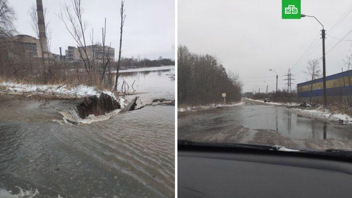 Бобры против коммунальщиков: в Кирове дважды затопило улицу из-за построенных грызунами плотин