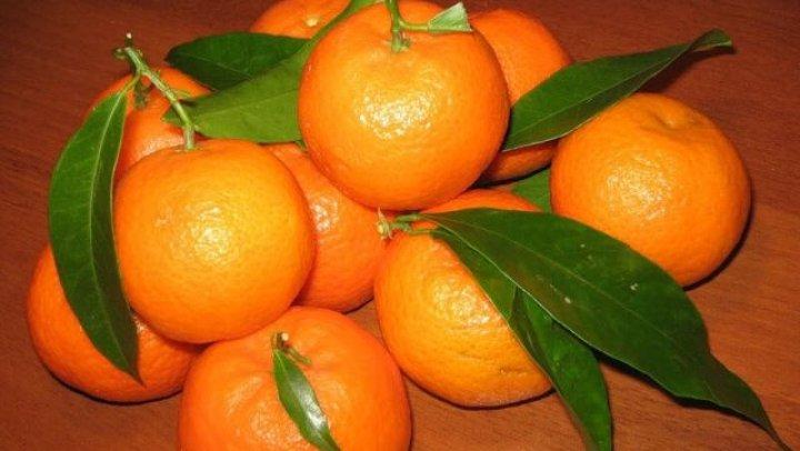 Диетологи рассказали о вреде и пользе мандаринов