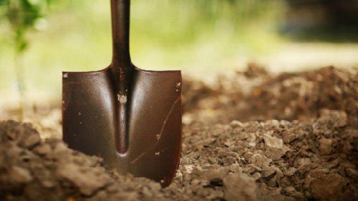 Житель приднестровского района нашёл человеческие останки (ФОТО)