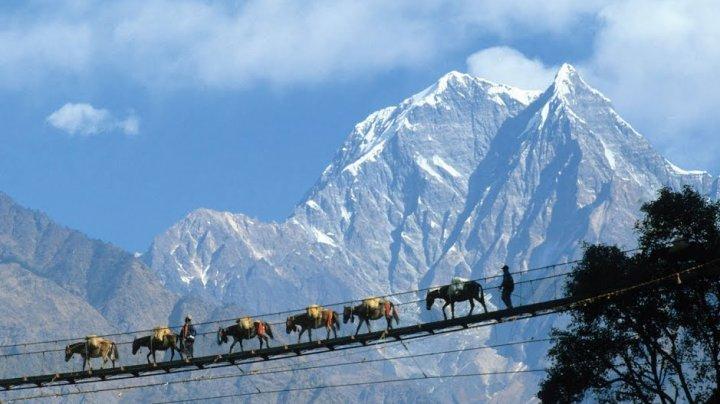 Пятнадцать человек погибли при падении автобуса в реку в Непале