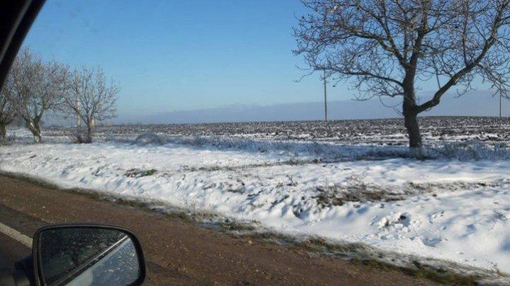 Зима на пороге: сказочные пейзажи в Сорокском районе (ФОТО)