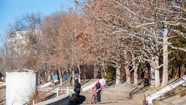 Бесснежный январь: какую погоду обещают синоптики на этой неделе