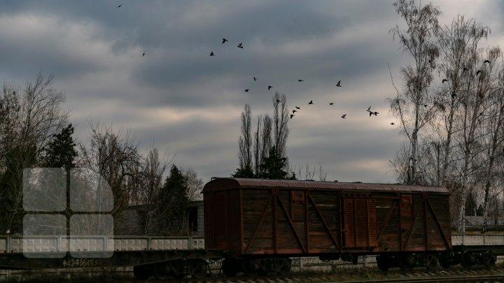 Погода на 11 декабря: небо затянет тучами, местами выпадет мокрый снег