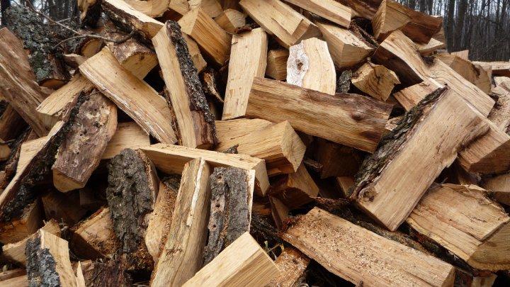Помощь к зиме: несколько пенсионеров получили бесплатные дрова