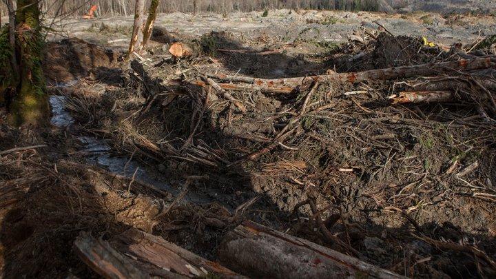 Где деньги? 1,5 миллиона леев, выделенных на ликвидацию оползня в Казаклии, ушли в непонятном направлении