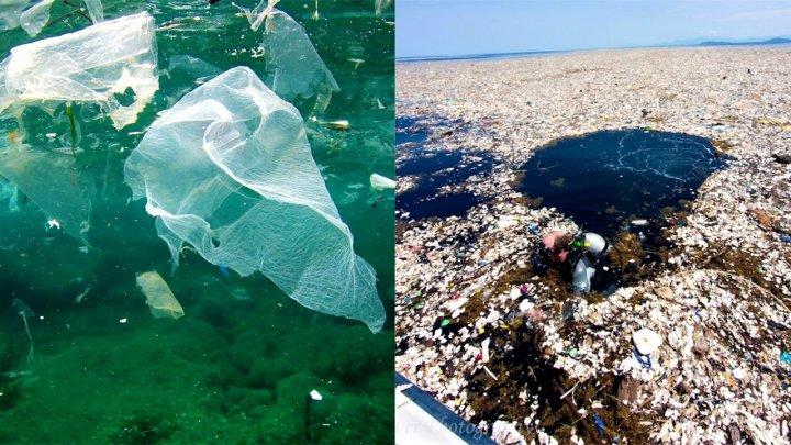 К берегу Индийского океана прибило тонны мусора