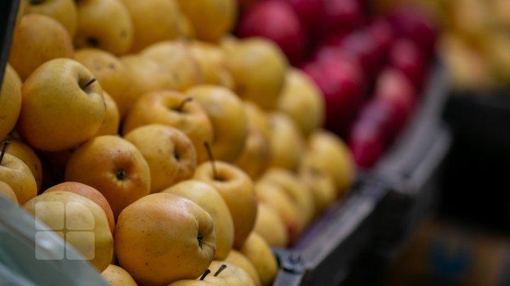У производителей яблок опускаются руки - урожай богат, но дают за него очень мало