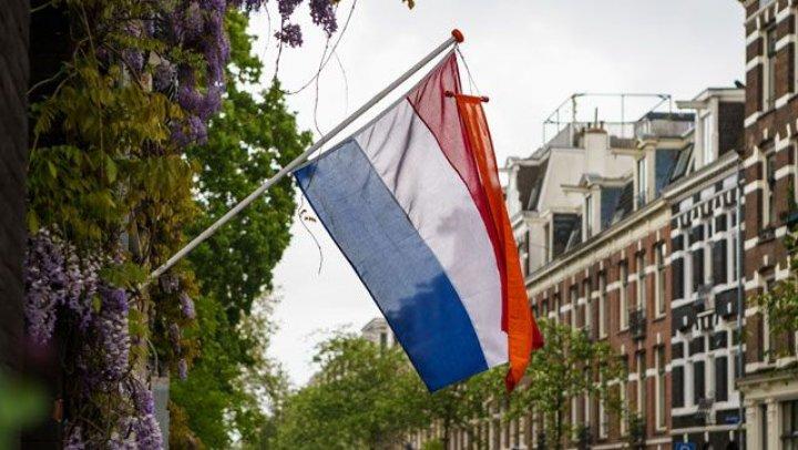 Голландию переименовали: как теперь будет называться страна и какие затраты предполагает реформа