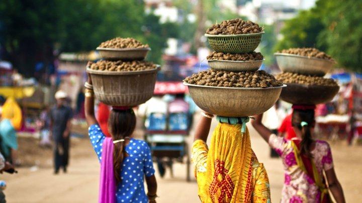 В Индии женщина очнулась во время собственных похорон