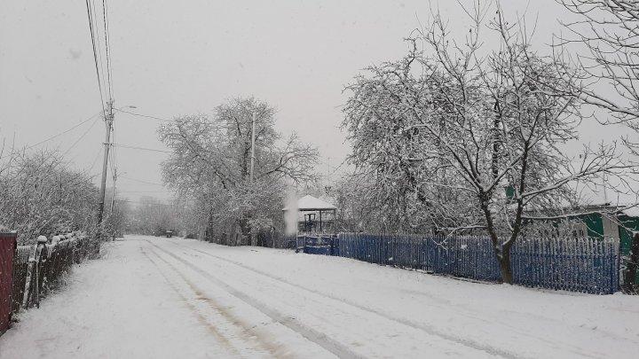 Зима пришла, когда уже не ждали: на севере Молдовы идёт снег (ВИДЕО)