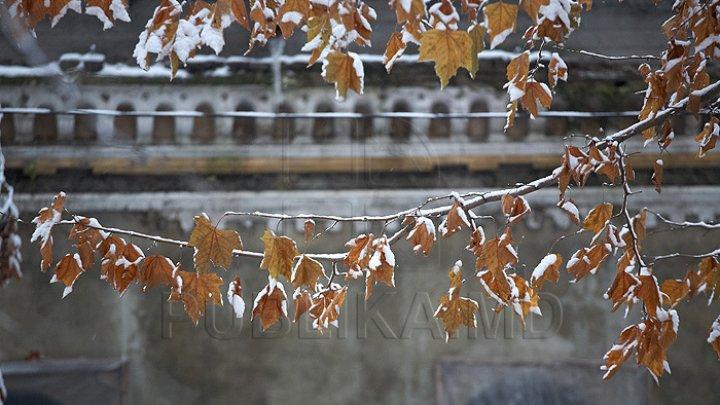 Похолодание и, возможно, мокрый снег на севере: прогноз погоды в Молдове на 28 ноября