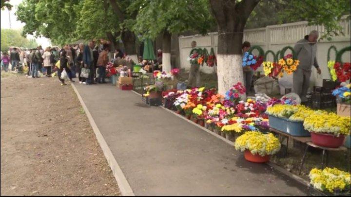 Торговцы цветами у столичного кладбища Святого Лазаря остались без разрешений: что говорят местные власти