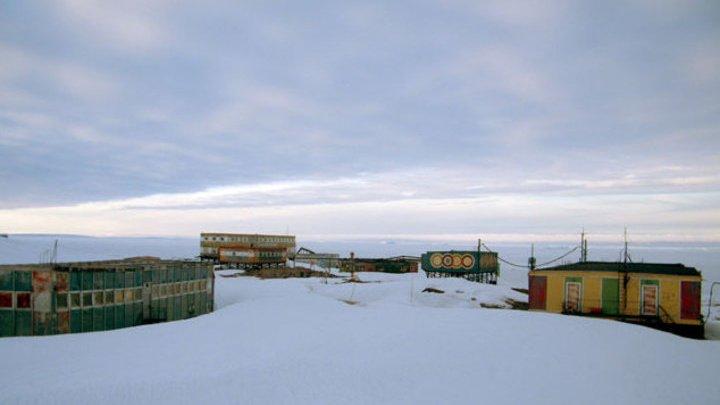 Аномальное лето в разгаре: в Антарктиде зафиксирован новый температурный рекорд